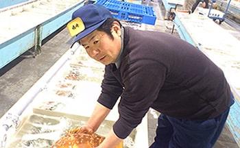 写真:市場の様子で、何列も魚が 並んでいるところがある。市場の人が魚を扱っている様子